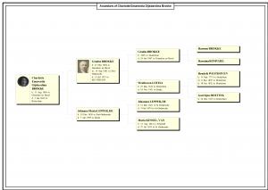 Ancestors of Charlotte Emarentia Gijsberdina Brokke